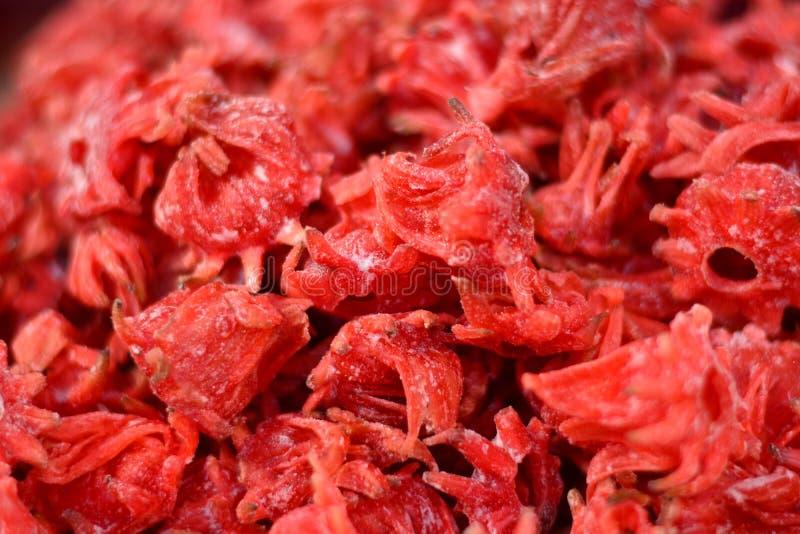 Αφυδατωμένα και ξηρά hibiscus στοκ εικόνα με δικαίωμα ελεύθερης χρήσης