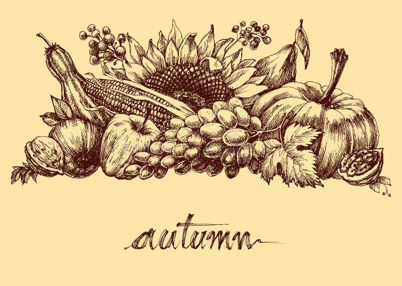 λαχανικά καρπών φθινοπώρο&upsi ελεύθερη απεικόνιση δικαιώματος