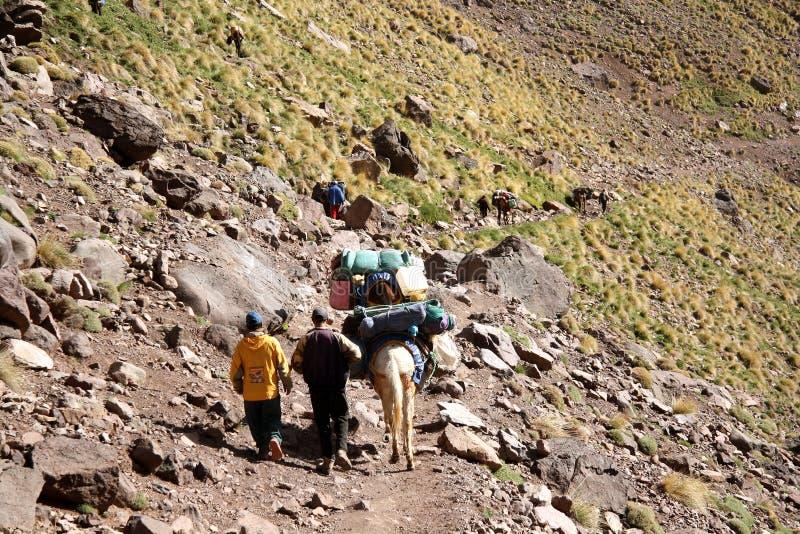 Αχθοφόροι στα βουνά ατλάντων (Μαρόκο) στοκ φωτογραφίες