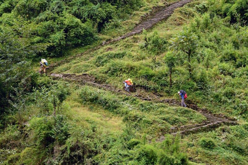 Αχθοφόροι Sherpa που φέρνουν τα βαριά backpaks στοκ εικόνα