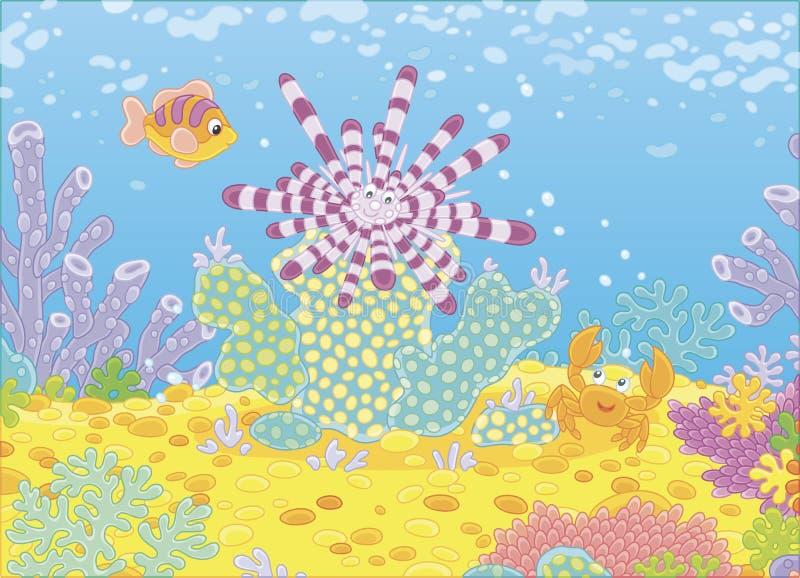 Αχινός, ψάρια και καβούρι διανυσματική απεικόνιση