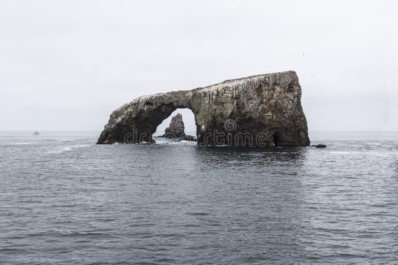 Αψίδα θάλασσας Καλιφόρνιας νησιών Anacapa στοκ φωτογραφία