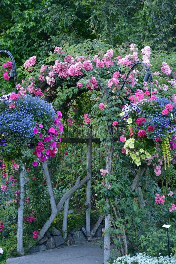 Αψίδα θερινών κήπων στοκ εικόνα