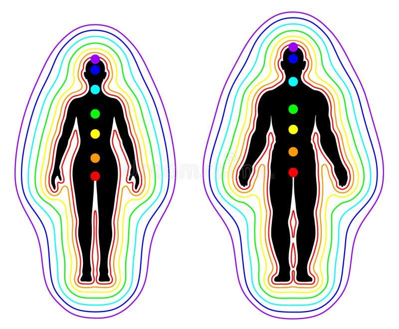 Αύρα και chakras στο άσπρο υπόβαθρο - διάνυσμα διανυσματική απεικόνιση