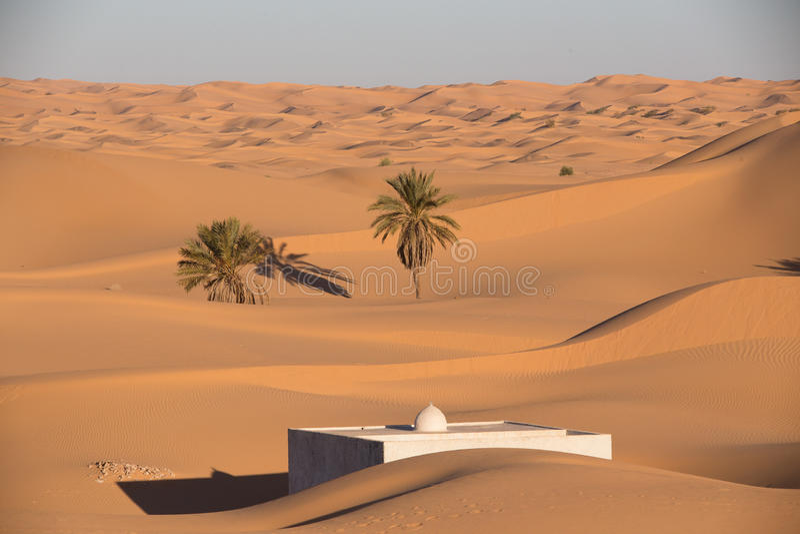 Αλγερινή Σαχάρα στοκ εικόνες με δικαίωμα ελεύθερης χρήσης