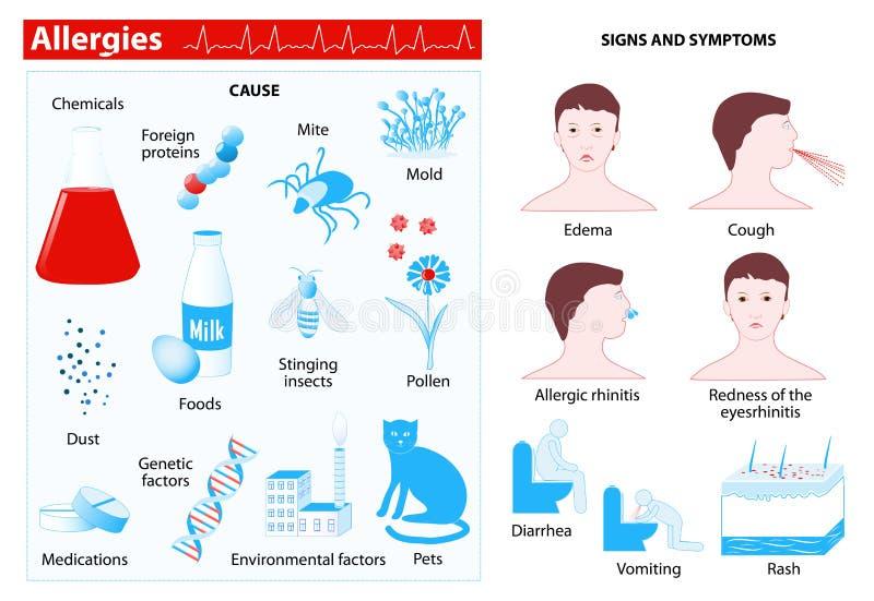 αλλεργιών Infographic διανυσματική απεικόνιση