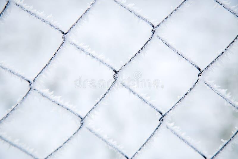 Αλιεία με δίχτυα πλέγματος που καλύπτεται με τον παγετό στοκ φωτογραφία με δικαίωμα ελεύθερης χρήσης