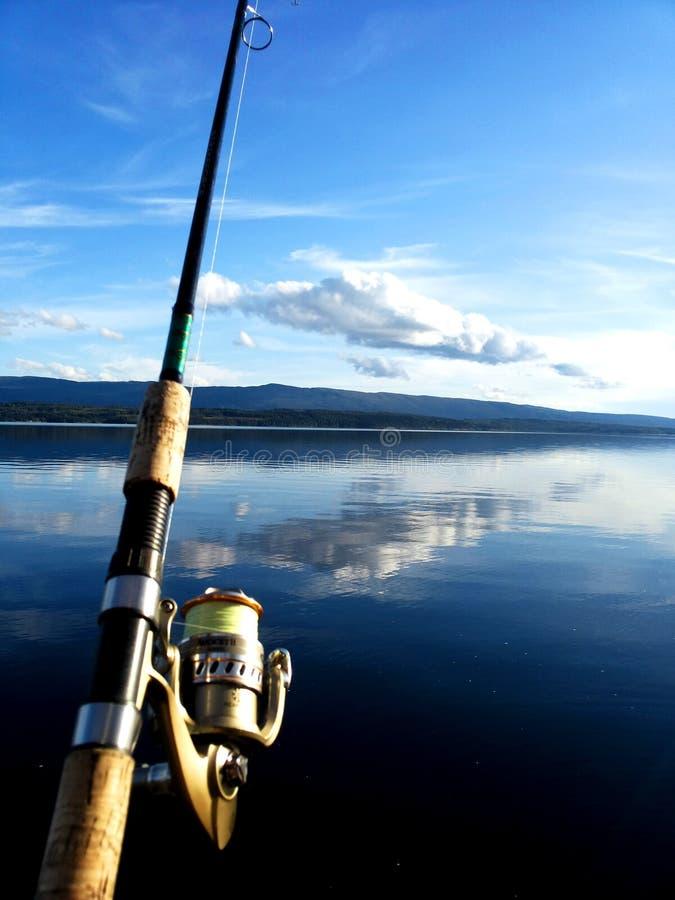 Αλιεία μια ηλιόλουστη ημέρα στοκ εικόνες
