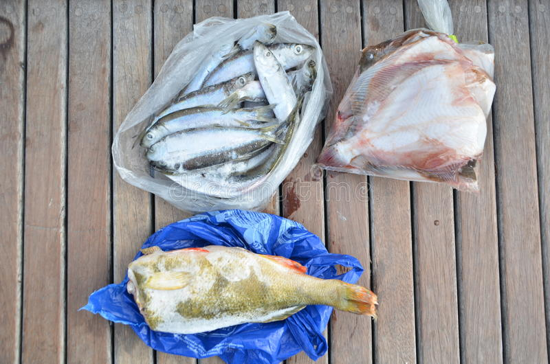 Αλιεία 10 ώρες νωρίτερα από έναν τοπικό ψαρά στοκ εικόνα με δικαίωμα ελεύθερης χρήσης