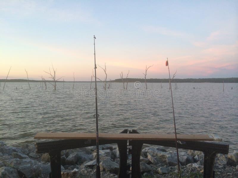 αλιεία στοκ φωτογραφία