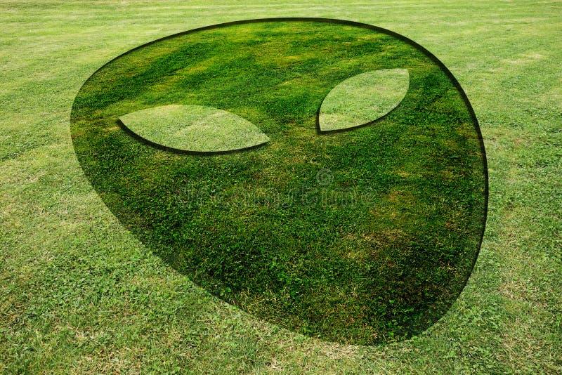 Αλλοδαπό λιβάδι κύκλων συγκομιδών προσώπου πλαστό στοκ εικόνα