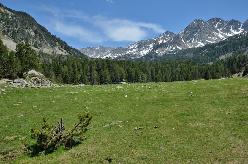 Αλπική κοιλάδα vall-de-Madriu-Perafita-Claror, Πυρηναία στοκ φωτογραφία