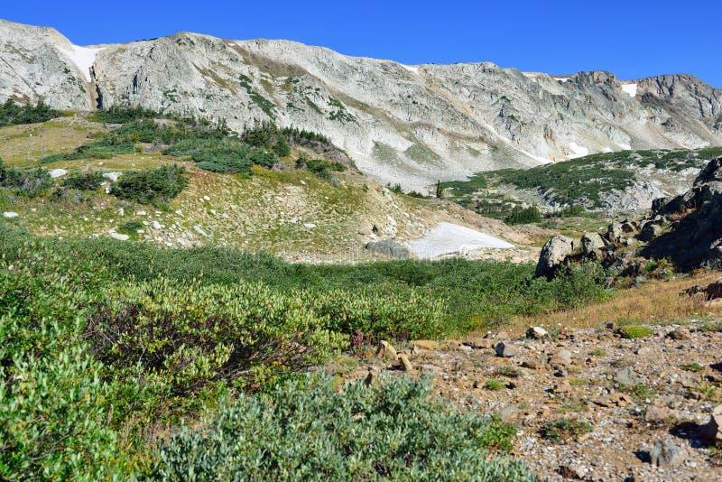 Αλπικό τοπίο στα βουνά τόξων ιατρικής του Ουαϊόμινγκ στοκ εικόνες
