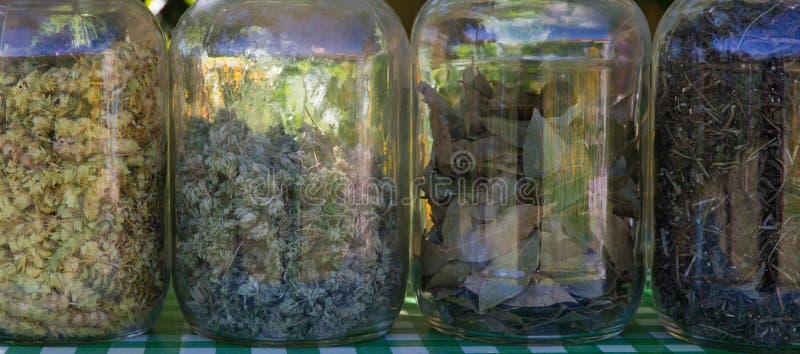 Βάζα γυαλιού με τα χορτάρια για το μαγείρεμα στοκ εικόνα