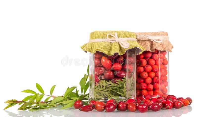 Βάζο με τα ροδαλά ισχία και τα μούρα του Rowan, δίπλα στο κλαδάκι και τα διεσπαρμένα φρούτα, που απομονώνονται στο λευκό στοκ φωτογραφία