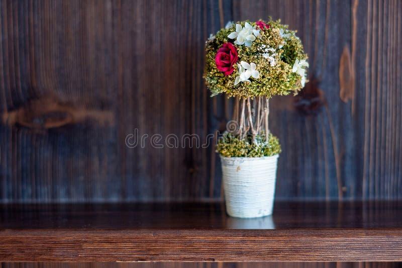 Βάζο μπονσάι λουλούδια στα ξύλινα ραφιών ραφιών στο εσωτερικό στοκ φωτογραφία με δικαίωμα ελεύθερης χρήσης