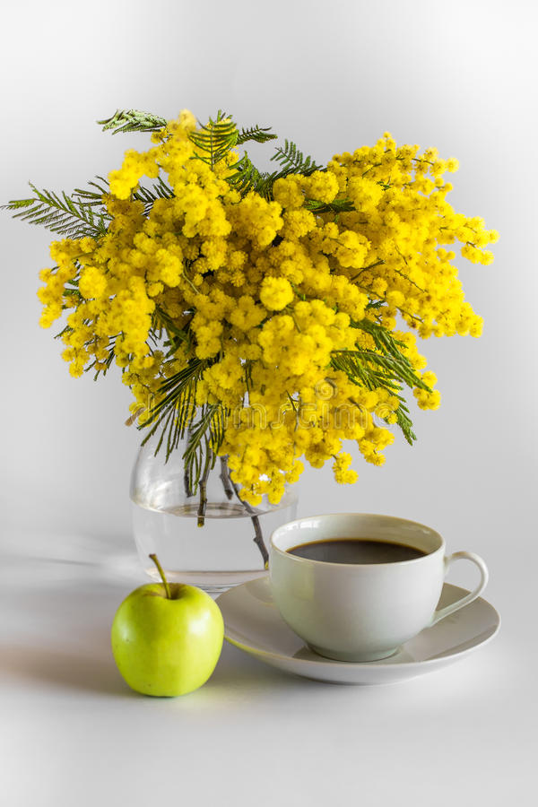 Βάζο του γυαλιού με τους κλάδους ενός mimosa, po φλυτζανιών ενός καφέ και ενός μήλου σε ένα άσπρο υπόβαθρο στοκ εικόνες με δικαίωμα ελεύθερης χρήσης