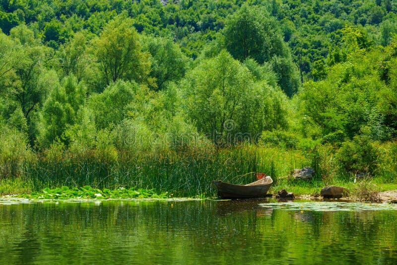 Βάρκα, λίμνη Skadar στοκ εικόνες