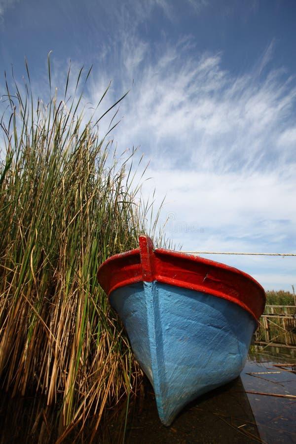 βάρκα bulrushes στοκ εικόνες με δικαίωμα ελεύθερης χρήσης