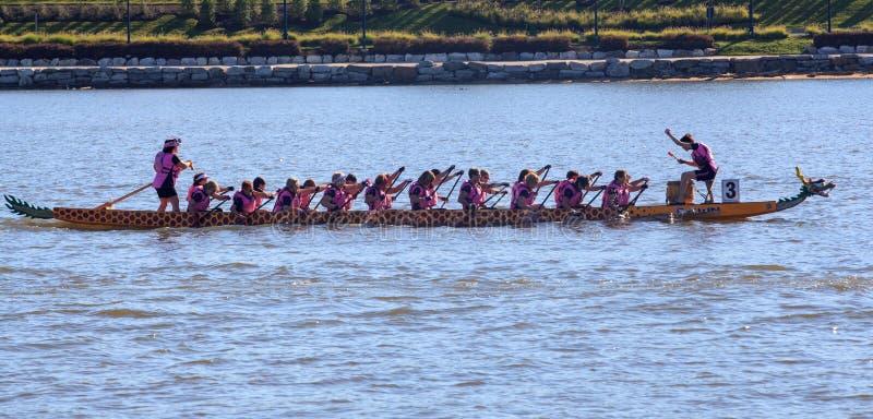 Βάρκα Paddlers δράκων στη φυλή στοκ φωτογραφίες με δικαίωμα ελεύθερης χρήσης