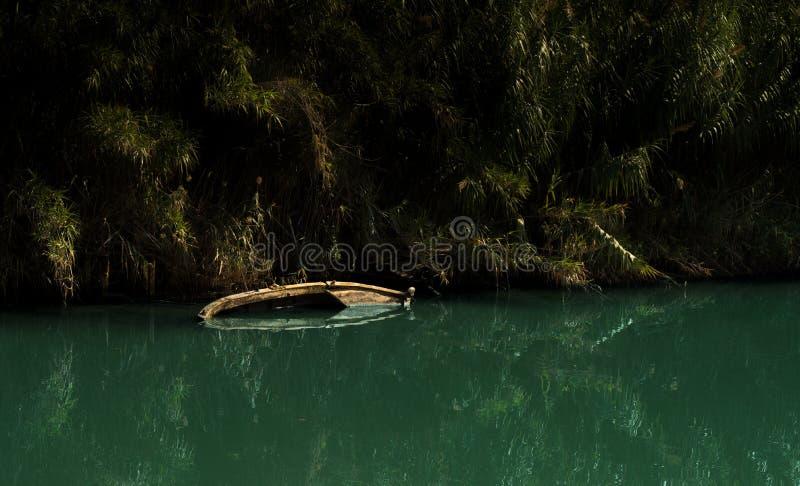 Βάρκα Sinked σε έναν ποταμό στοκ εικόνες