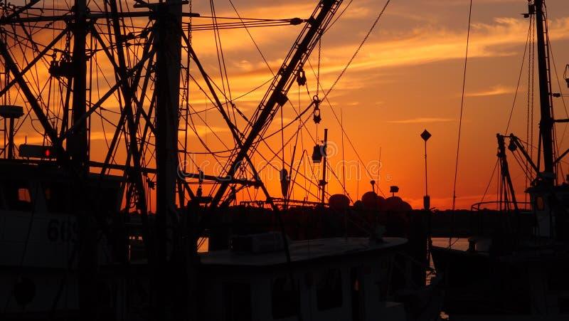 Βάρκες γαρίδων στο ηλιοβασίλεμα στοκ εικόνα με δικαίωμα ελεύθερης χρήσης