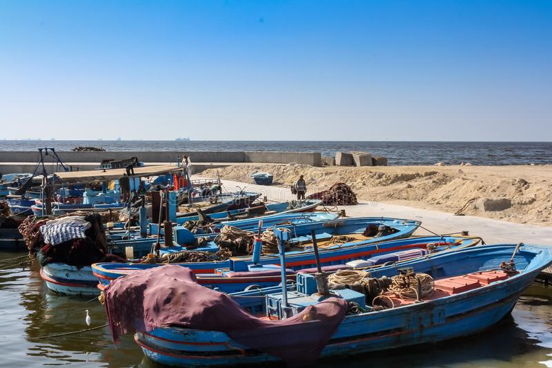 βάρκες που αλιεύουν το λιμάνι στοκ εικόνες με δικαίωμα ελεύθερης χρήσης