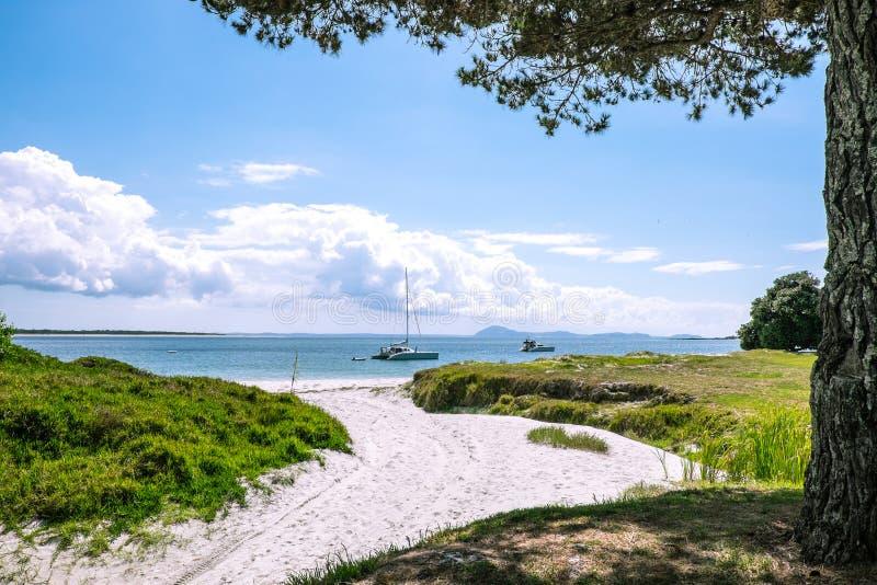 Βάρκες που δένονται σε μια απομονωμένη αμμώδη παραλία στη χερσόνησο Karikari, στοκ εικόνα με δικαίωμα ελεύθερης χρήσης