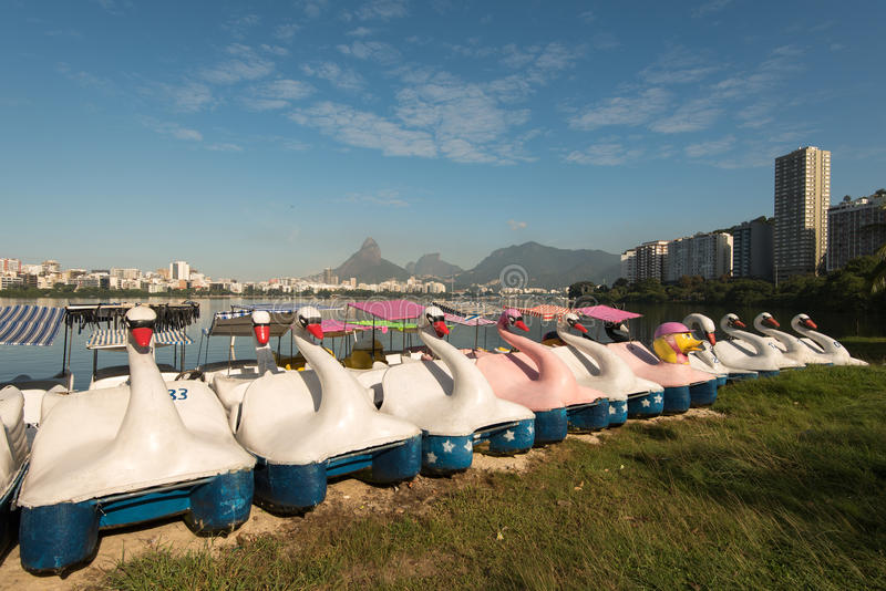 Βάρκες του Κύκνου στη λιμνοθάλασσα στοκ φωτογραφία με δικαίωμα ελεύθερης χρήσης