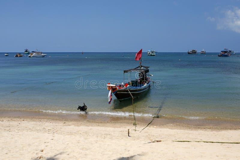 Βάρκες Longtail κοντά στην αποβάθρα της Mae Haad Koh Tao, Ταϊλάνδη στοκ φωτογραφία