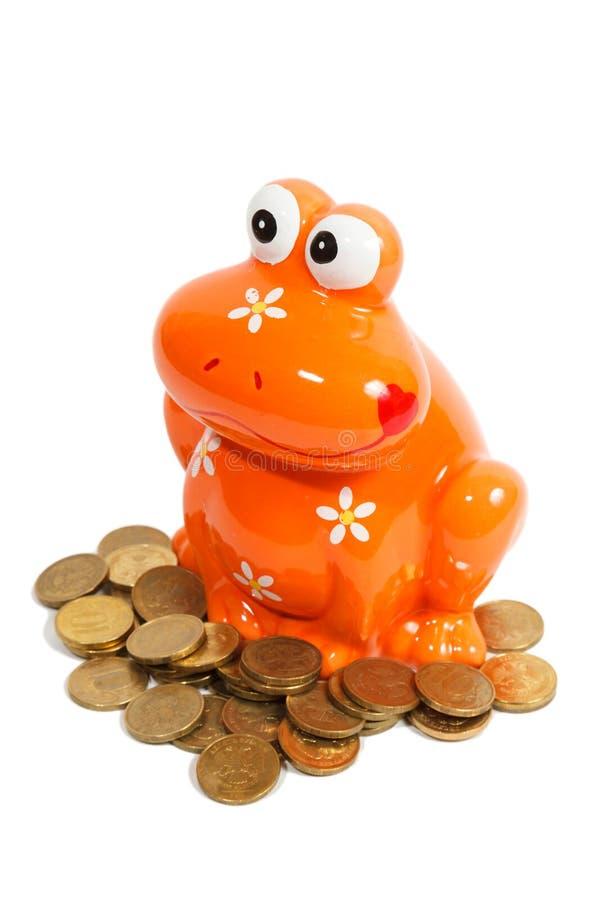 Βάτραχος Piggy και χρυσά νομίσματα που απομονώνονται στοκ φωτογραφία
