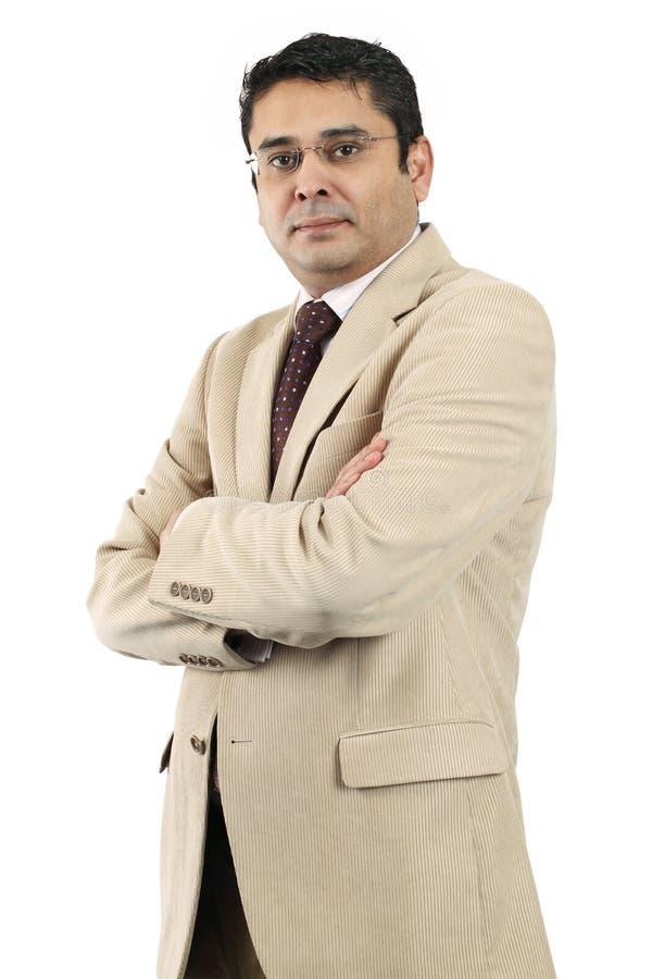Βέβαιος ινδικός επιχειρηματίας στοκ εικόνα με δικαίωμα ελεύθερης χρήσης