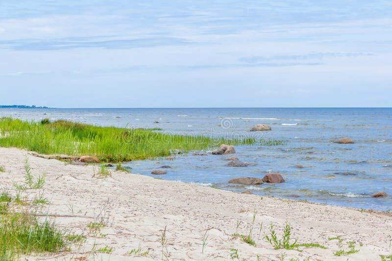 βήματα άμμου της Ρωσίας kurshskaya kosa οριζόντων αμμόλοφων που τεντώνουν στοκ φωτογραφία