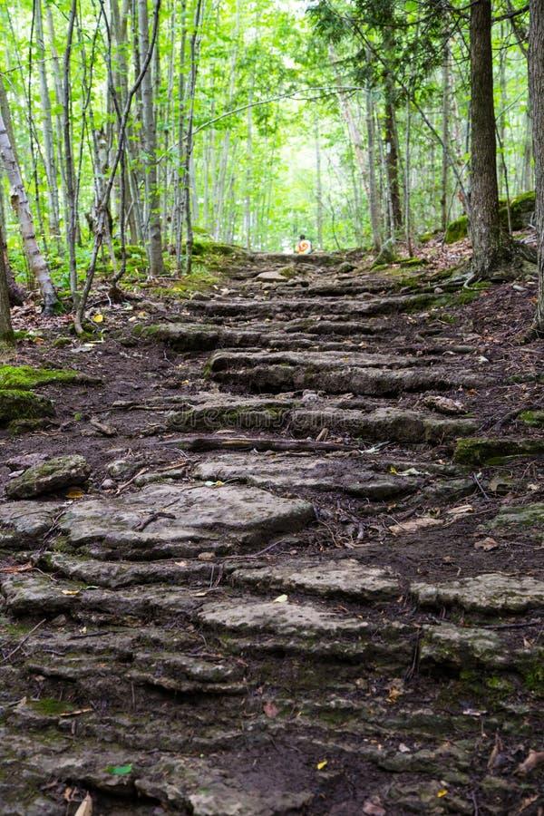 Βήματα βράχου στο ίχνος του Bruce στοκ εικόνα με δικαίωμα ελεύθερης χρήσης