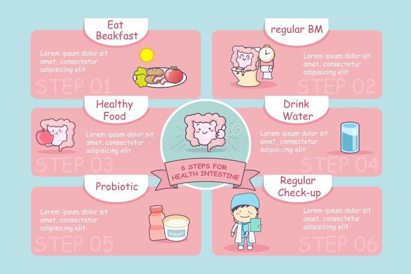 6 βήματα για το έντερο υγείας ελεύθερη απεικόνιση δικαιώματος