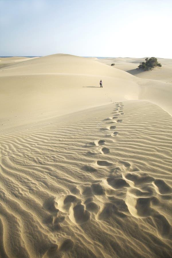 Βήματα στην έρημο στοκ φωτογραφία με δικαίωμα ελεύθερης χρήσης