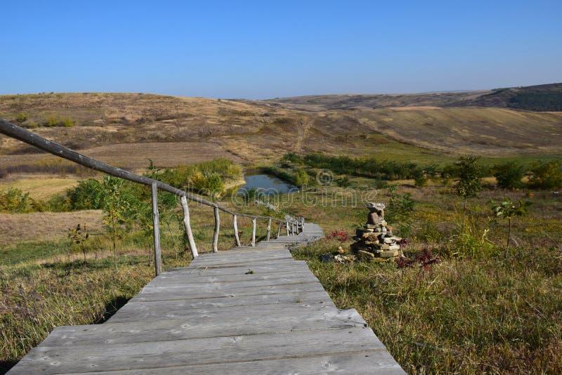Βήματα στη λίμνη στοκ φωτογραφία με δικαίωμα ελεύθερης χρήσης