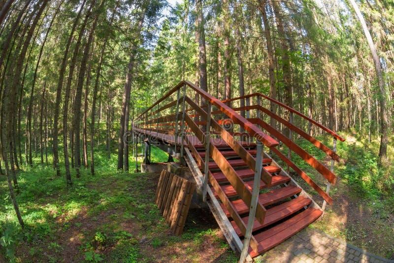 Βήματα στη γέφυρα στοκ εικόνες