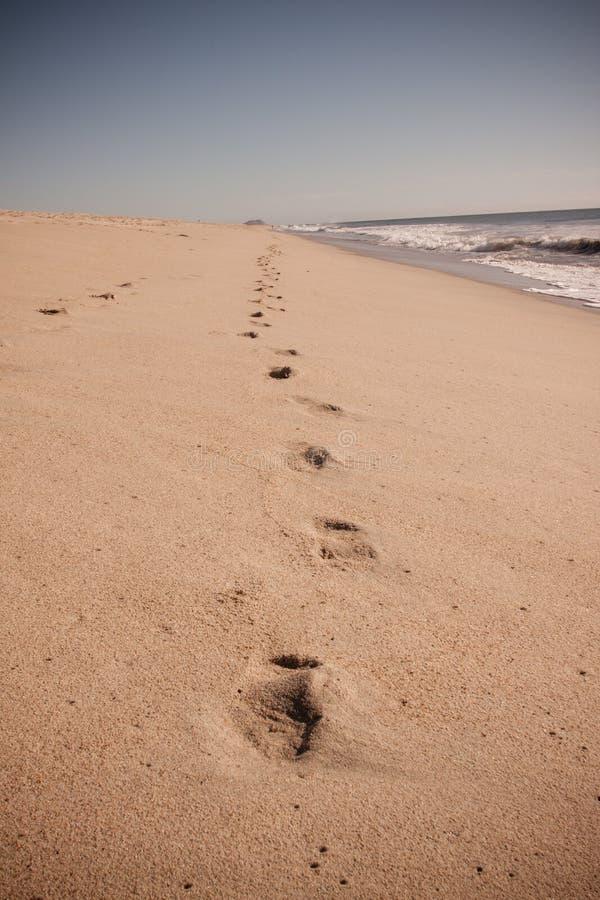 Βήμα στην άμμο στοκ φωτογραφία με δικαίωμα ελεύθερης χρήσης