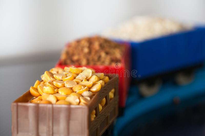 Βαγόνια εμπορευμάτων με το σιτάρι των μπιζελιών, του ρυζιού και του φαγόπυρου Πολιτισμοί σιταριού στοκ εικόνα
