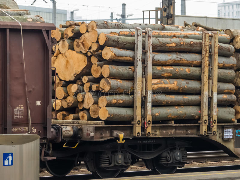 Βαγόνι εμπορευμάτων που φορτώνεται με το ξύλο στοκ φωτογραφία