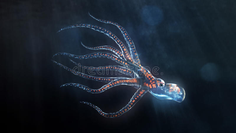 βαθιά θάλασσα χταποδιών απεικόνιση αποθεμάτων