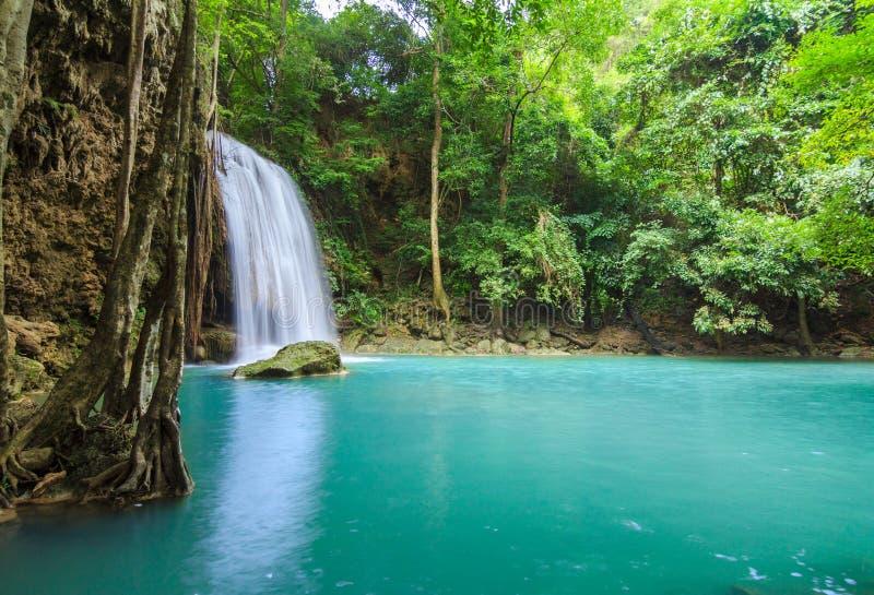 βαθιοί δασικοί καταρράκ&tau στοκ φωτογραφίες