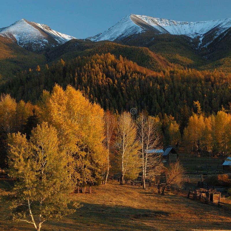 Βαθύ φθινόπωρο στοκ εικόνα με δικαίωμα ελεύθερης χρήσης