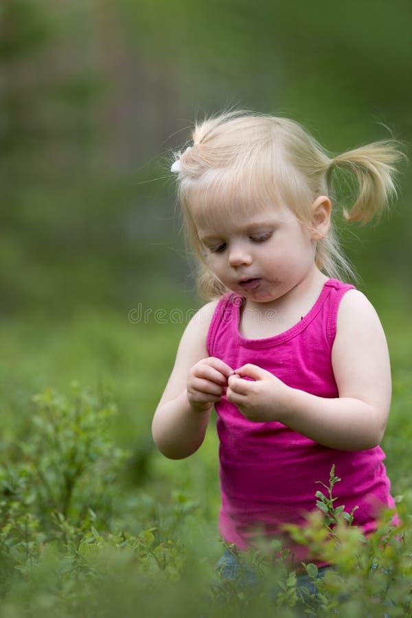 Βακκίνια μιας ευτυχή μικρών κοριτσιών επιλογής στοκ φωτογραφία με δικαίωμα ελεύθερης χρήσης