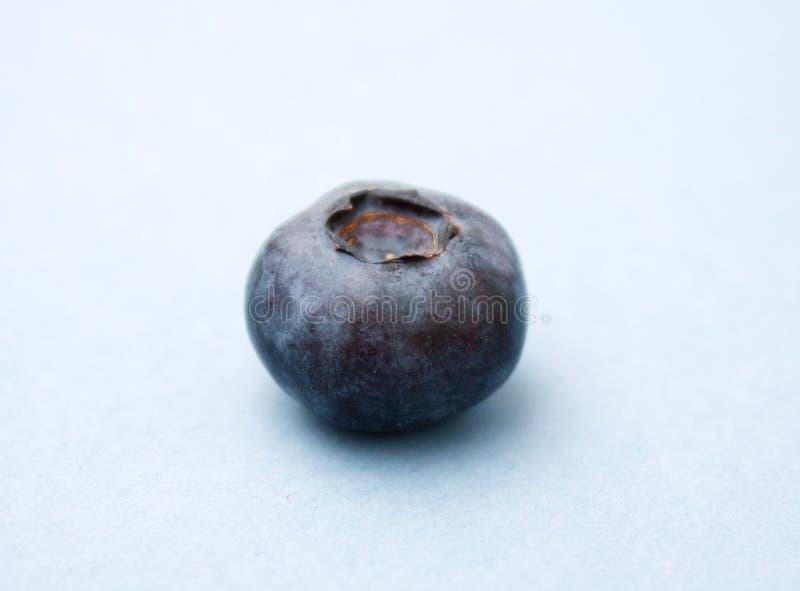 βακκίνιο στοκ φωτογραφία με δικαίωμα ελεύθερης χρήσης