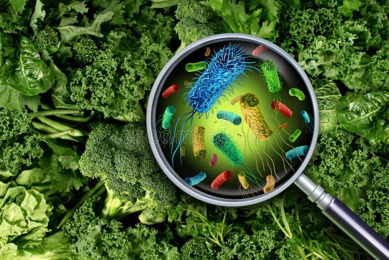 Βακτηρίδια και μικρόβια στα λαχανικά διανυσματική απεικόνιση