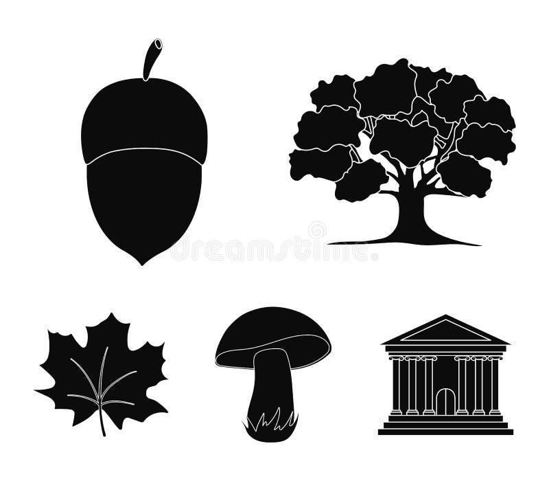 Βαλανιδιά, βελανίδι, εδώδιμο μανιτάρι, φύλλο σφενδάμου Δασικά καθορισμένα εικονίδια συλλογής στο μαύρο Ιστό απεικόνισης αποθεμάτω απεικόνιση αποθεμάτων