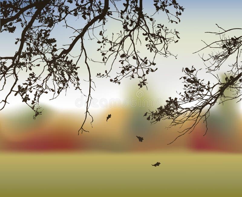 βαλανιδιά κλάδων διανυσματική απεικόνιση