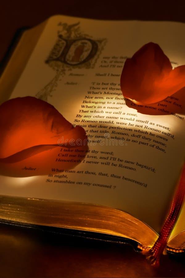 βαλεντίνος βιβλίων s στοκ εικόνα με δικαίωμα ελεύθερης χρήσης